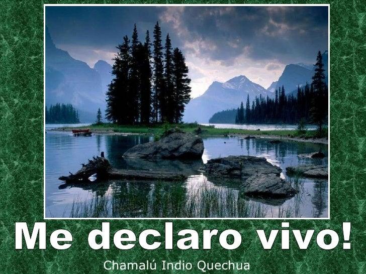 Chamalú Indio Quechua Me declaro vivo!