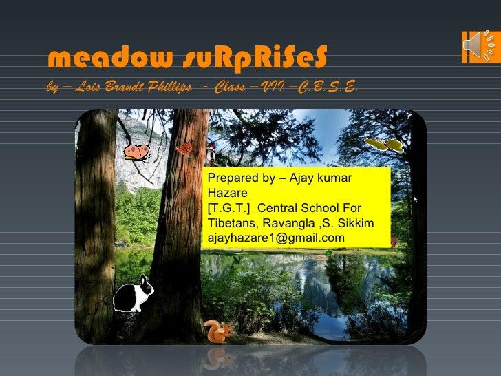 meadow suRpRiSeSby – Lois Brandt Phillips - Class – VII –C.B.S.E.                         Prepared by – Ajay kumar        ...