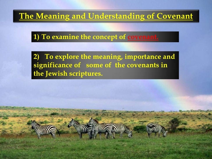 Meaning and understanding of covenant 2010