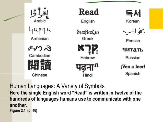 Symbols Elements of Culture Elements of Culture Language