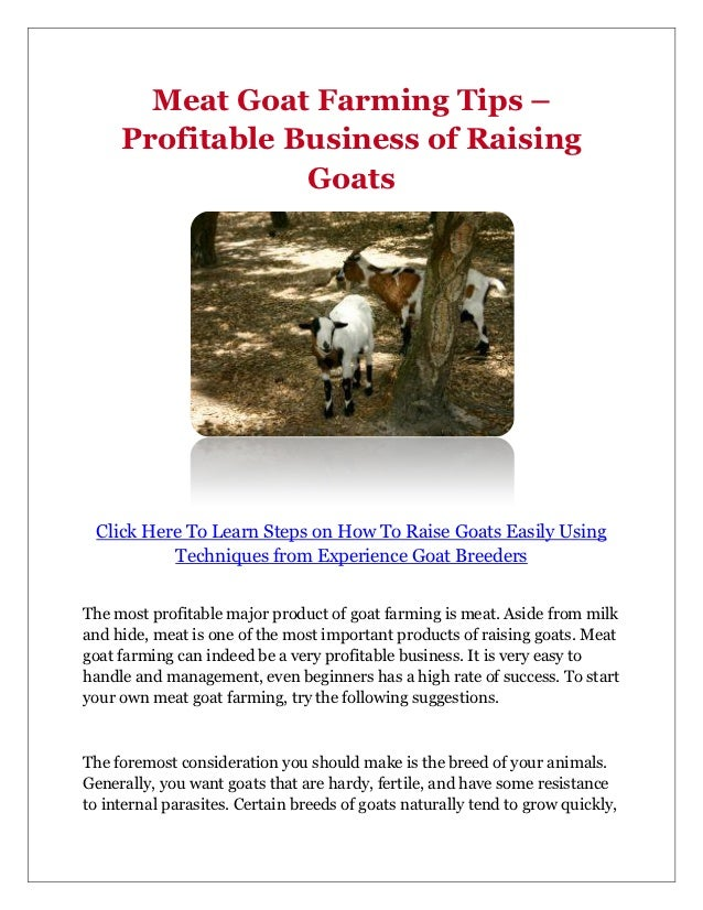 Downloadable meat goat business plan