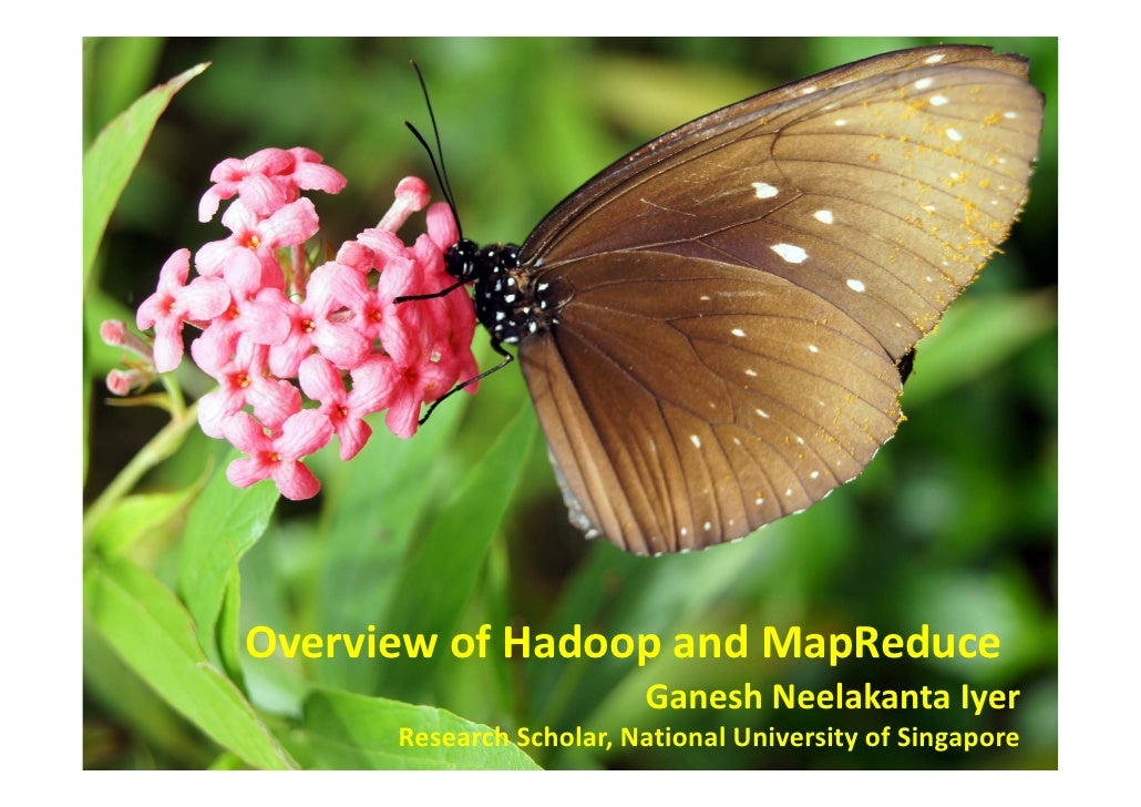 Overview of Hadoop and MapReduce                          Ganesh Neelakanta Iyer       Research Scholar, National Universi...