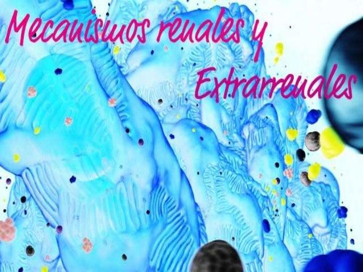 Regulación de osmolaridad del liquido extracelular y de la concentración de                 sodio• Para el correcto funcio...