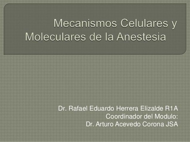Dr. Rafael Eduardo Herrera Elizalde R1A                 Coordinador del Modulo:         Dr. Arturo Acevedo Corona JSA