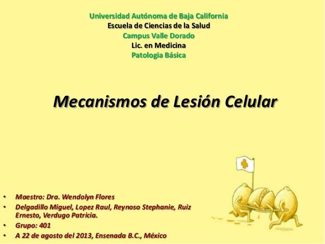 Universidad Autónoma de Baja California Escuela de Ciencias de la Salud Campus Valle Dorado Lic. en Medicina Patologia Bás...