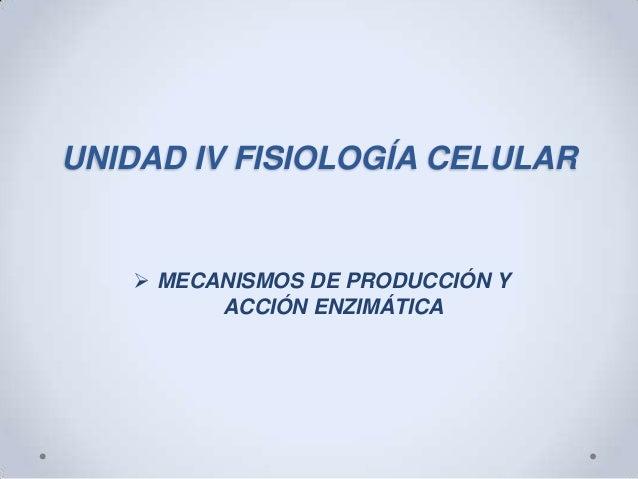 Mecanismos de producción y acción enzimatica