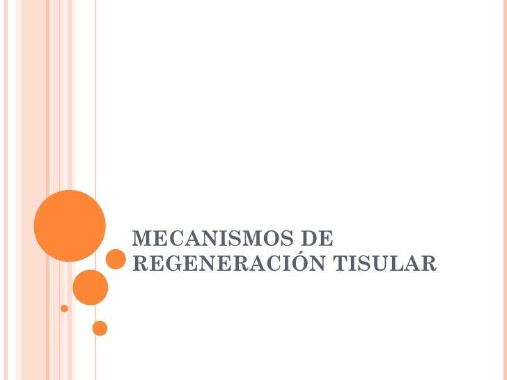 Mecanismos de regeneración tisular