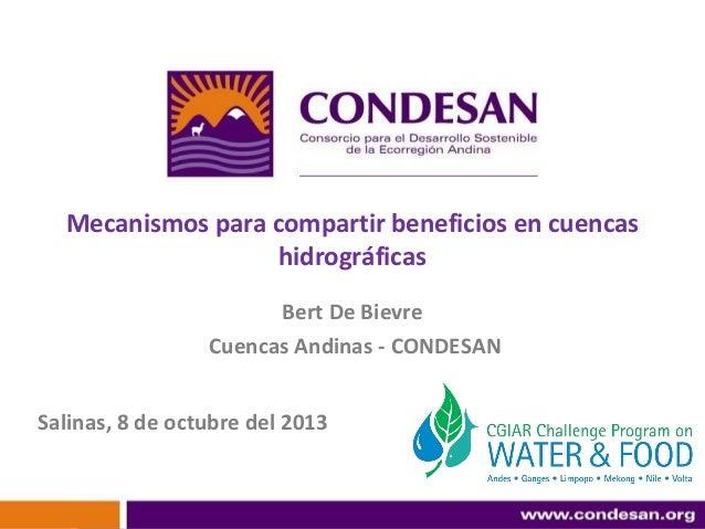 Mecanismos para compartir beneficios en cuencas hidrográficas Bert De Bievre Cuencas Andinas - CONDESAN Salinas, 8 de octu...