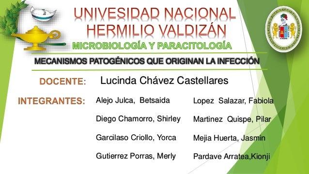 MECANISMOS PATOGÉNICOS QUE ORIGINAN LA INFECCIÓN  Lucinda Chávez Castellares  Alejo Julca, Betsaida  Diego Chamorro, Shirl...
