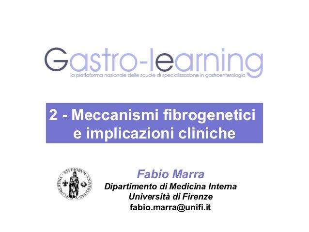 2 - Meccanismi fibrogenetici    e implicazioni cliniche              Fabio Marra       Dipartimento di Medicina Interna   ...