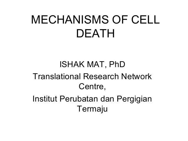 MECHANISMS OF CELL DEATH ISHAK MAT, PhD Translational Research Network Centre, Institut Perubatan dan Pergigian Termaju