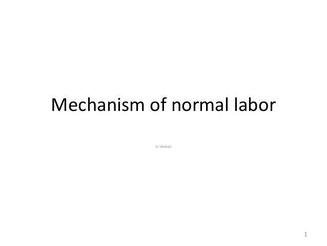 Mechanism of normal labor