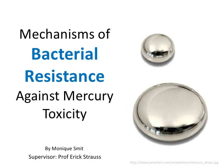 Mechanisms Of Bacterial Resistance Against Mercury Toxicity