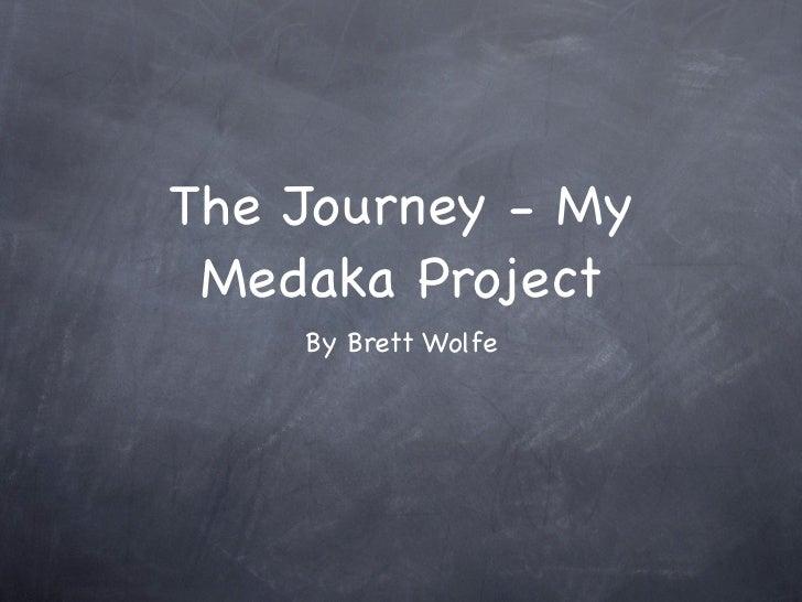 The Journey - My Medaka Project    By Brett Wolfe