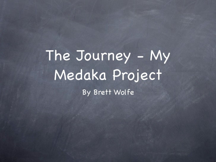 My Medaka project