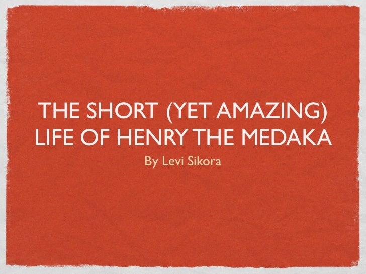 THE SHORT (YET AMAZING)LIFE OF HENRY THE MEDAKA        By Levi Sikora