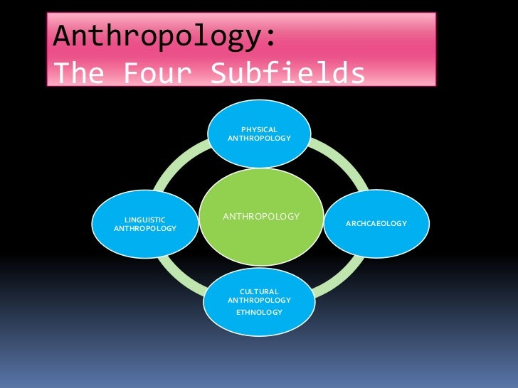 physical anthropology research topics