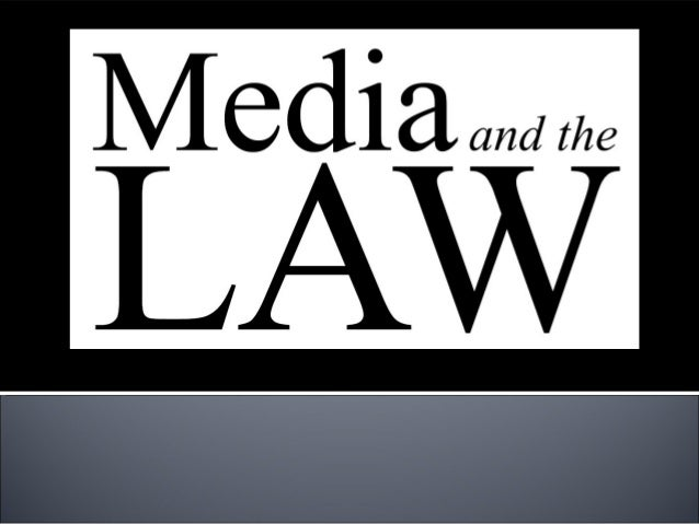 Media Law: Understanding Freedom of Expression © 2008 The McGraw-Hill Companies, Inc. All rights reserved Chapter Outline...