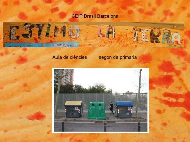CEIP Brasil Barcelona Aula de ciències  segon de primària