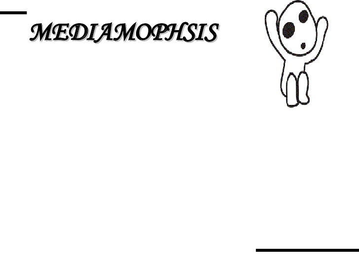 MEDIAMOPHSIS