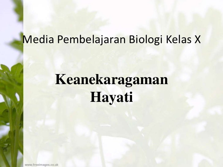 Media Pembelajaran Biologi Kelas X      Keanekaragaman          Hayati