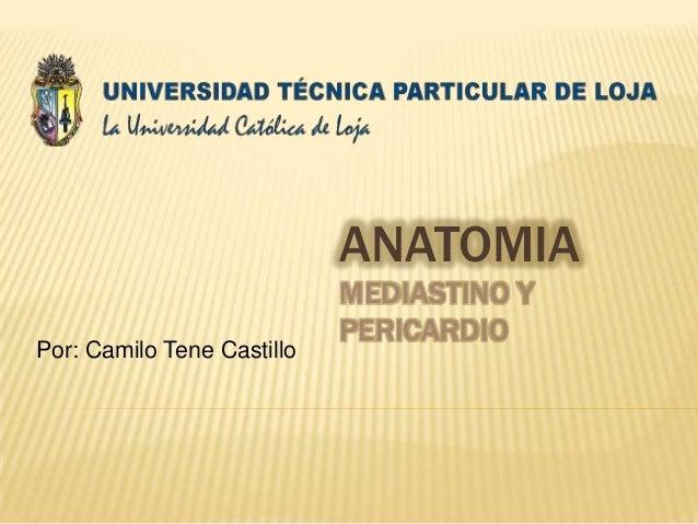 ANATOMIA                            MEDIASTINO Y                            PERICARDIOPor: Camilo Tene Castillo