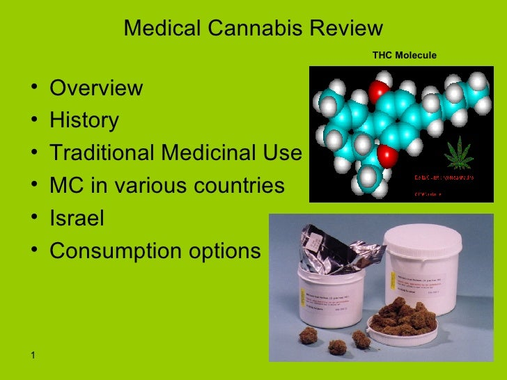 Medical Cannabis Conference in Israel