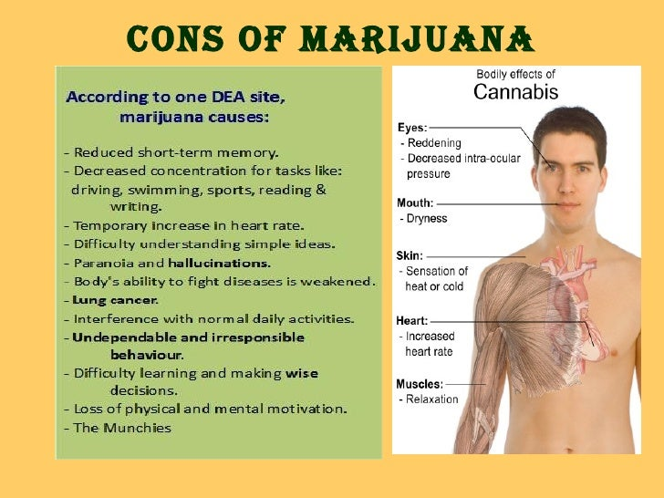 legalization of marijuana pros and cons essay