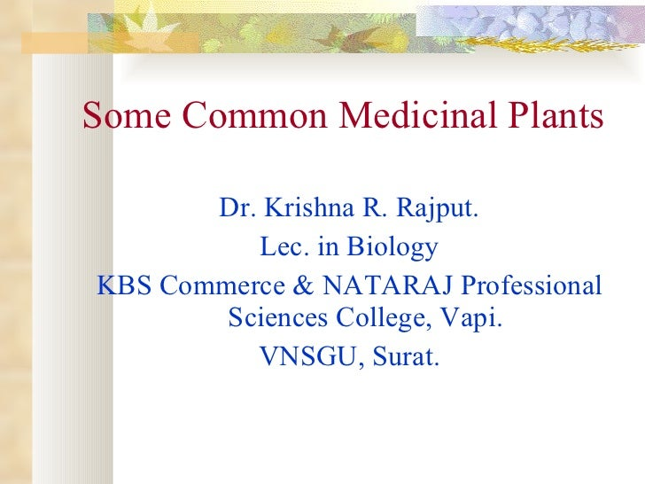 Some Common Medicinal Plants <ul><li>Dr. Krishna R. Rajput. </li></ul><ul><li>Lec. in Biology </li></ul><ul><li>KBS Commer...