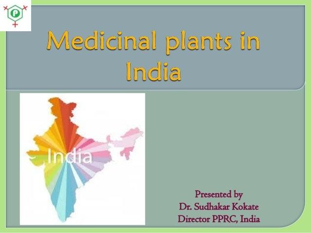 Medicinal plants in India
