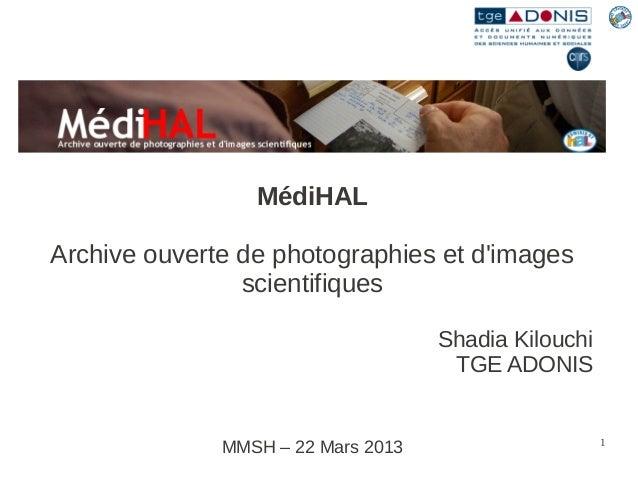 MédiHALArchive ouverte de photographies et dimages                scientifiques                                    Shadia ...
