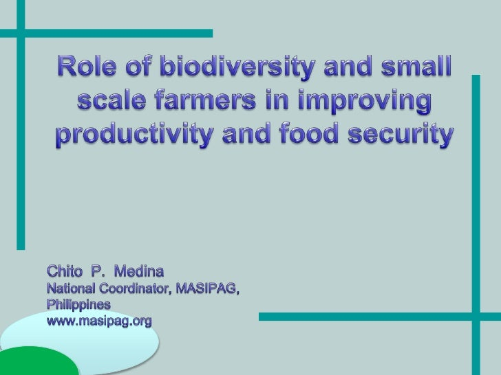 Role of small scale farmers and biodiversity in improving agricultural productivity and food security
