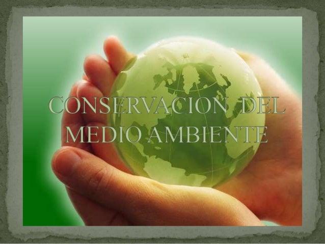 El Medio ambiente y la Contaminación