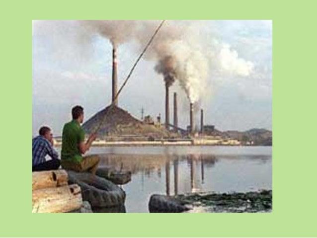 MEDIO AMBIENTE El medio ambiente es el mundo exterior que rodea a todo ser viviente y que determina su existencia.