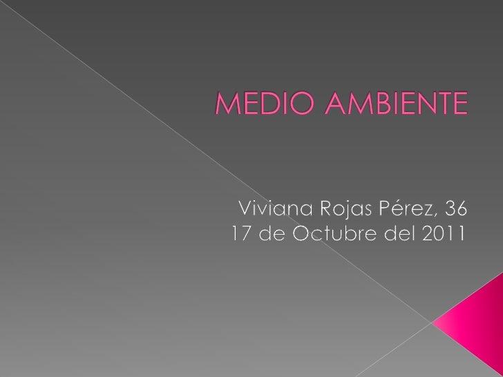MEDIO AMBIENTE <br />Viviana Rojas Pérez, 36<br />17 de Octubre del 2011<br />
