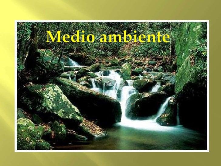    El medio ambiente es el    entorno que afecta a los    seres vivos y condiciona    especialmente          las    circu...