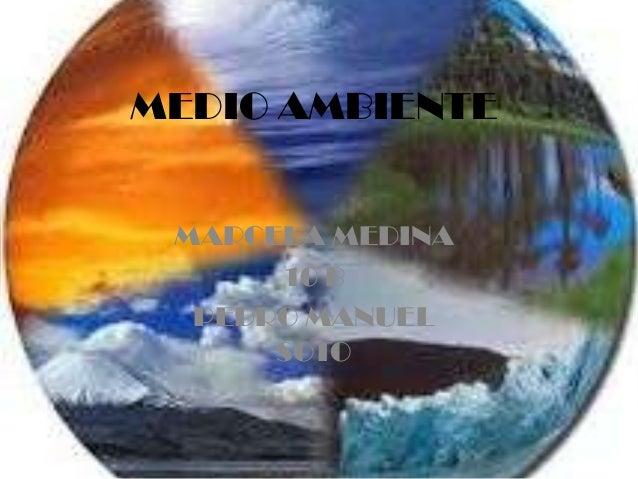 MEDIO AMBIENTE MARCELA MEDINA 10 B PEDRO MANUEL SOTO