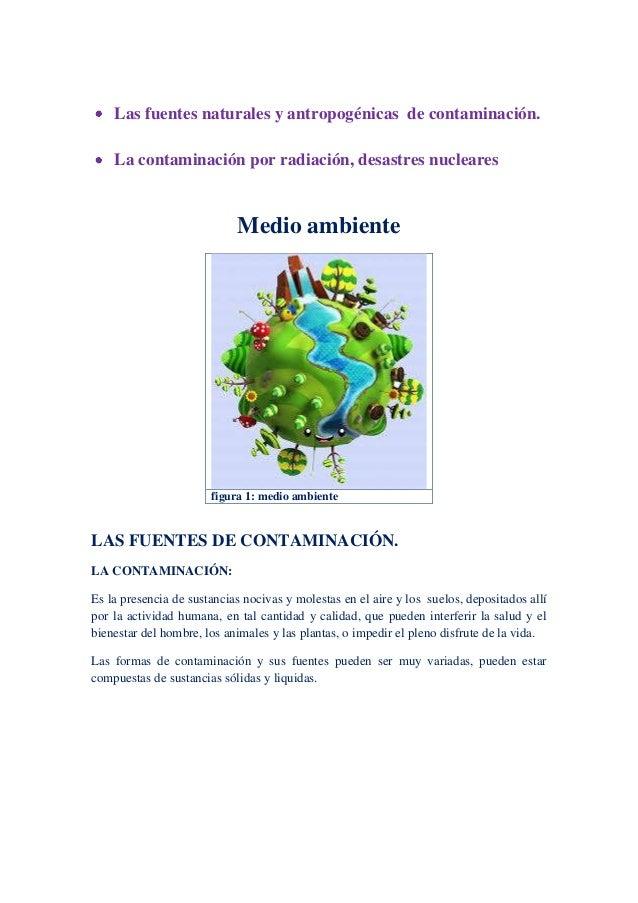 Las fuentes naturales y antropogénicas de contaminación. La contaminación por radiación, desastres nucleares Medio ambient...