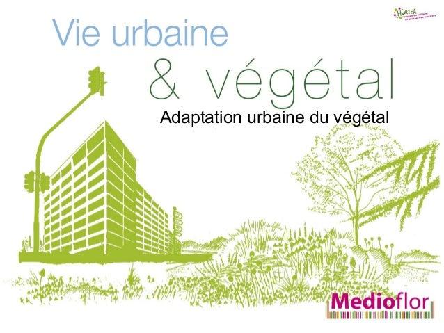 Adaptation urbainedu végétalAdaptation urbaine du végétal