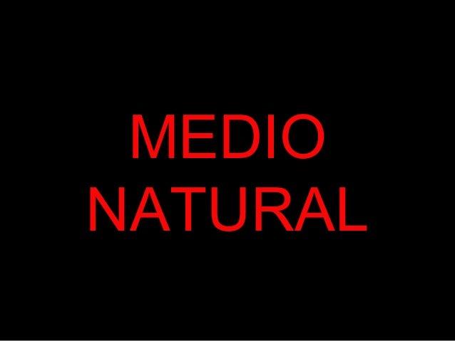 MEDIO NATURAL