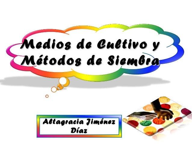 Altagracia JiménezAltagracia Jiménez DíazDíaz Medios de Cultivo yMedios de Cultivo y Métodos de SiembraMétodos de Siembra 1