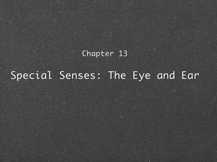 Chapter 13   Special Senses: The Eye and Ear