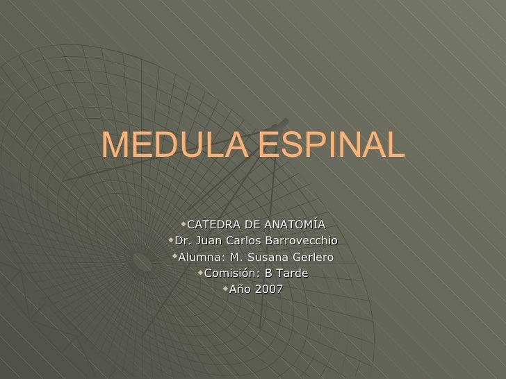 MEDULA ESPINAL <ul><li>CATEDRA DE ANATOMÍA </li></ul><ul><li>Dr. Juan Carlos Barrovecchio </li></ul><ul><li>Alumna: M. Sus...