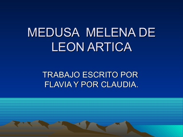 Medusa  melena de leon artica