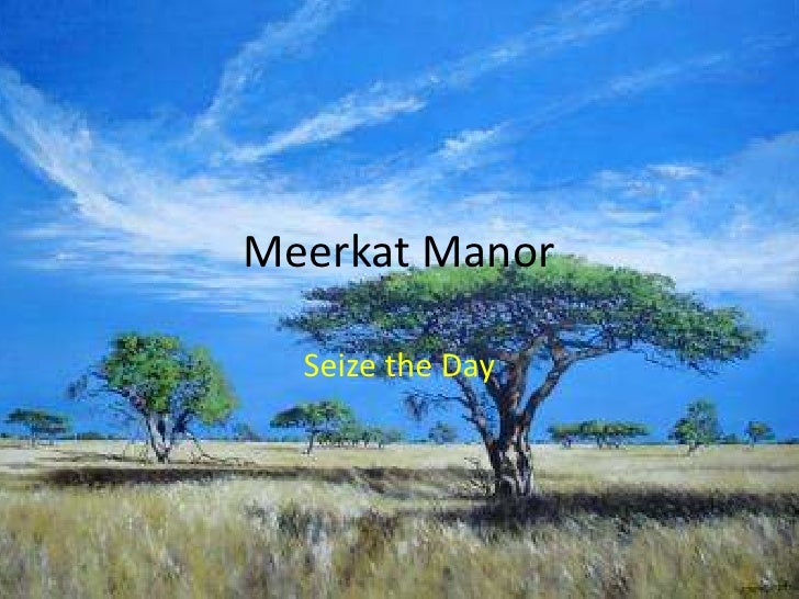Meerkat Manor Seize The Day