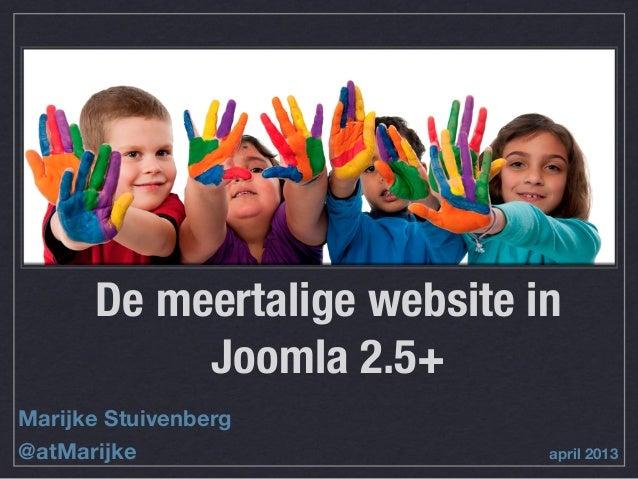 Meertalige website 25_30