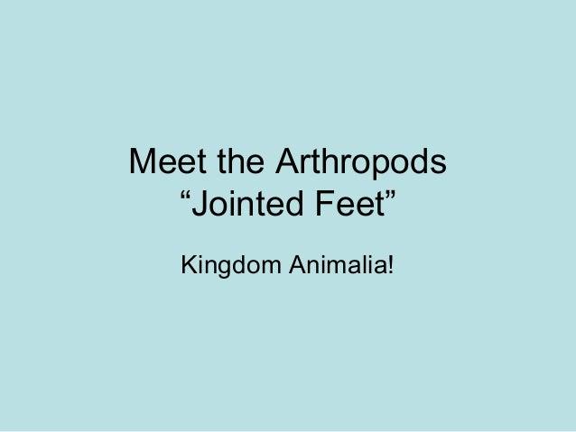 "Meet the Arthropods""Jointed Feet""Kingdom Animalia!"