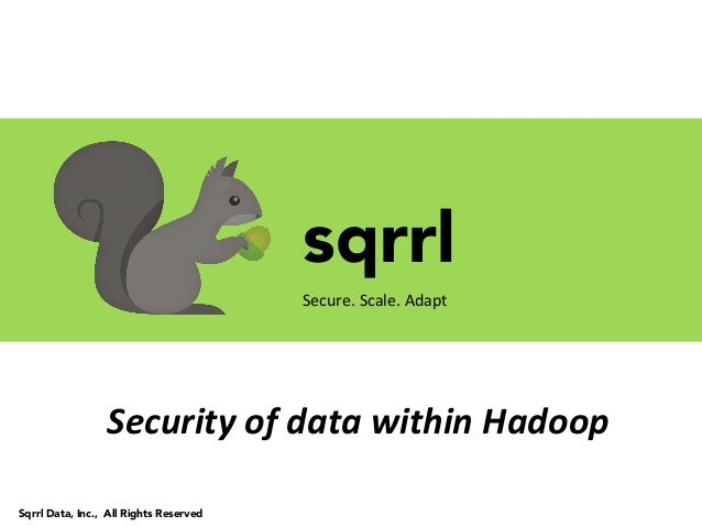 sqrrlSecure.	  Scale.	  Adapt	  Sqrrl Data, Inc., All Rights ReservedSecurity	  of	  data	  within	  Hadoop