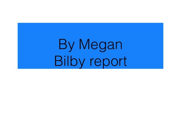 By Megan Bilby report