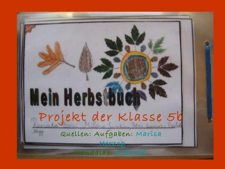 Projekt der Klasse 5b Quellen: Aufgaben:   Marisa  Herzog Mandalas:   Kidsweb